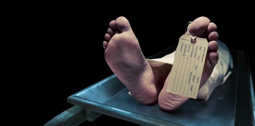 <strong>TIL JORD:</strong> Om kroppen er begravet i godt drenert jord tar det flere år før den reduseres til skjelett. Foto: Scanpix.