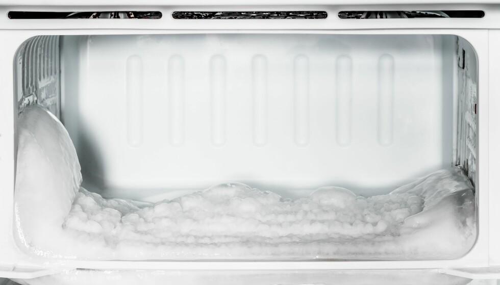 IKKE I BOD: Det er med god grunn at fryseboks og kjøleskap ikke må plasseres i boden. Foto: Scanpix.