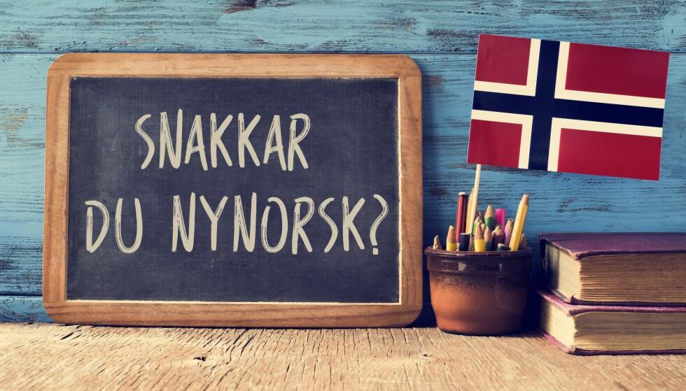 I ENDRING: Det norske språket er i stadig utvikling, og nå er det flere ord og fraser som lever på lånt tid. Foto: Scanpix.