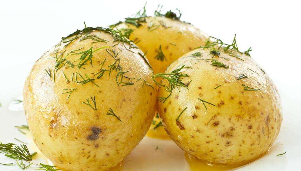 POTETKRISE: Den har reddet oss gjennom sultkriser, nå er det poteten som trenger å reddes av oss. Både forbruk og iproduksjon har gått kraftig ned de siste årene.