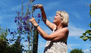 Bli frisk og glad i hagen