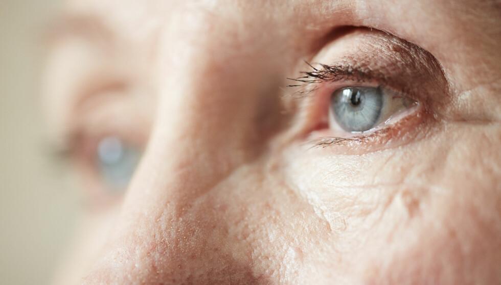 TEST DEG SELV: Bør du dra til øyelegen? I denne artikkelen kan du teste deg selv. Foto: Scanpix