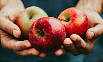 Epler er et mellommåltid proppfullt av fiber og andre viktige næringsstoffer.
