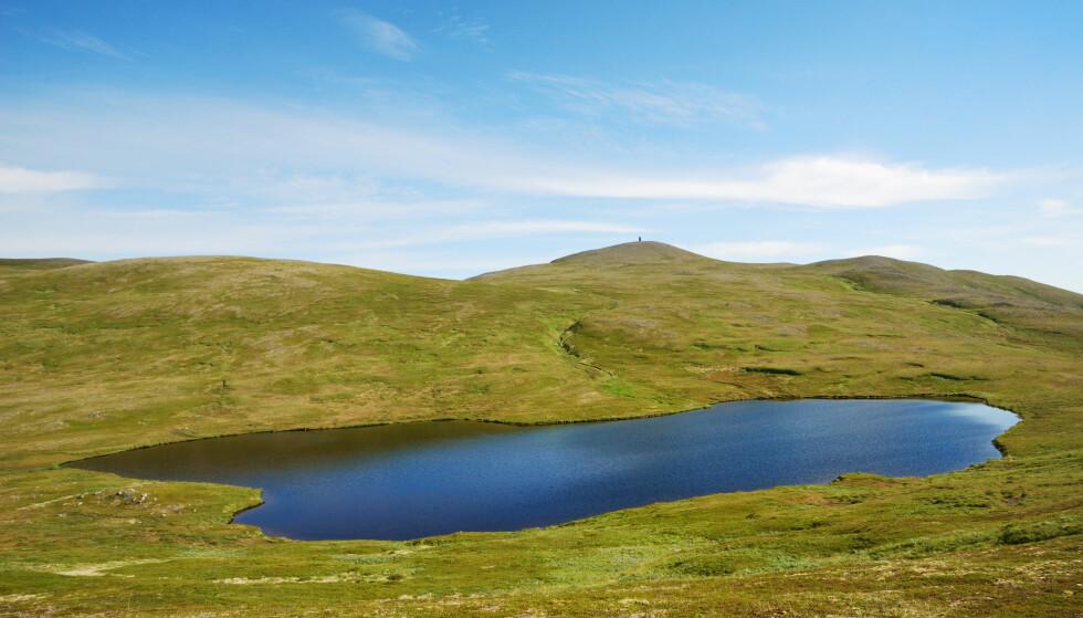 TJERN: Det går an å bruke et nærliggende tjern eller en innsjø som vannkilde. Foto: Shutterstock.