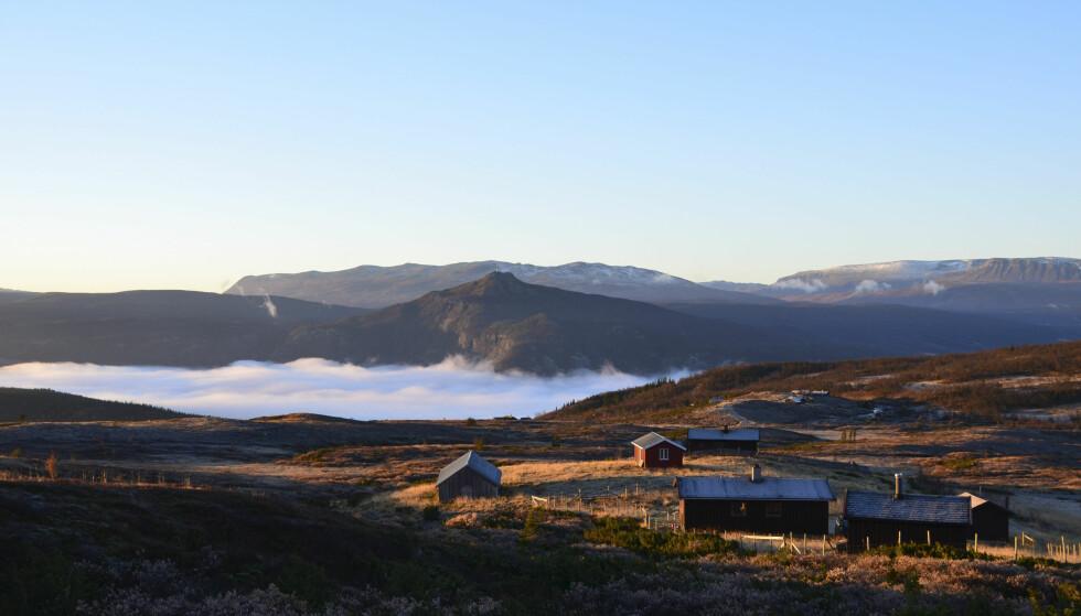 HYTTA: Her bodde familien Oldebråten/Tjomsland i et år. På vinteren måtte de gå på ski en time for å komme seg til hytta som de leier på åremål. Foto: Christin Oldebråten