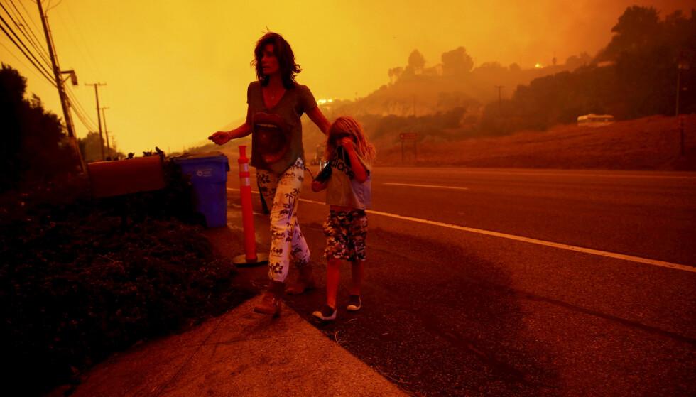 SKOGBRANN: Et av resultatene av sommerens tørke var rekordstore skogbranner. Foto: Reuters/ Scanpix