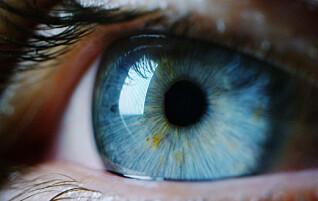 Fem ting du bør vite om synet