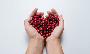 UTEN VIRKNING: Ifølge en rekke studier hjelper ikke tranebær mot blærekatarr.