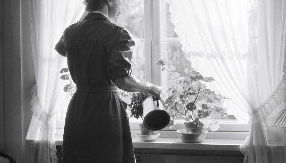 Og sånn gikk nå dagene for den hjemmearbeidende kvinnen. Vanning av blomstene i vinduskarmen kunne nok i mange tilfeller kombineres med å se hva nabokonene holdt på med. FOTO: Rigmor Dahl Delphin/Oslo Museum
