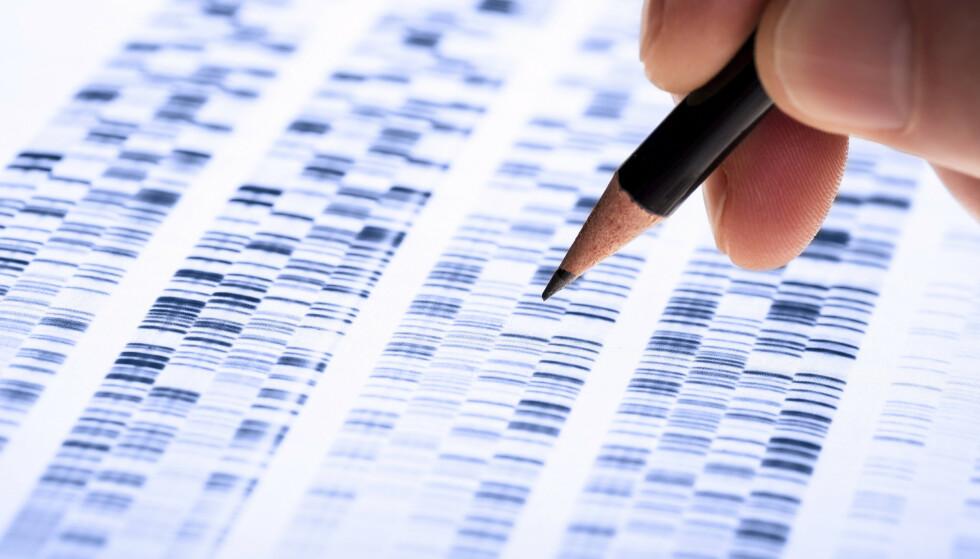KOMPLISERTE DATA: Kombinasjoner av gener danner det biologiske grunnlaget for hvem du er. Datamaskiner vil i framtiden gjøre jobben med å lese dem mye enklere, sier Dag Undlien, professor i medisinsk genetikk. FOTO: Shutterstock.