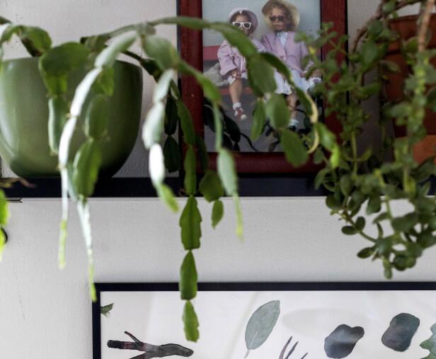PÅ HYLLA: Småbilder kan godt stå på en hylle, nattbord eller bokhylle blandet med ulike gjenstander, tipser Tonje Buer ved Fineart. Foto: Tore Meek / NTB scanpix.