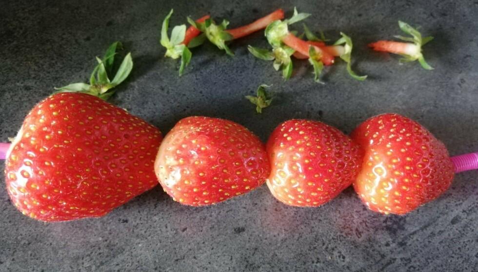JORDBÆR PÅ SUGERØR: Slik kan det bli seende ut, om du gjør jordbærtrikset riktig. Foto: Sondre Tallaksrud.