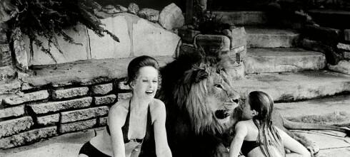 - Vi var ufattelig dumme som lot løven bo i huset med oss
