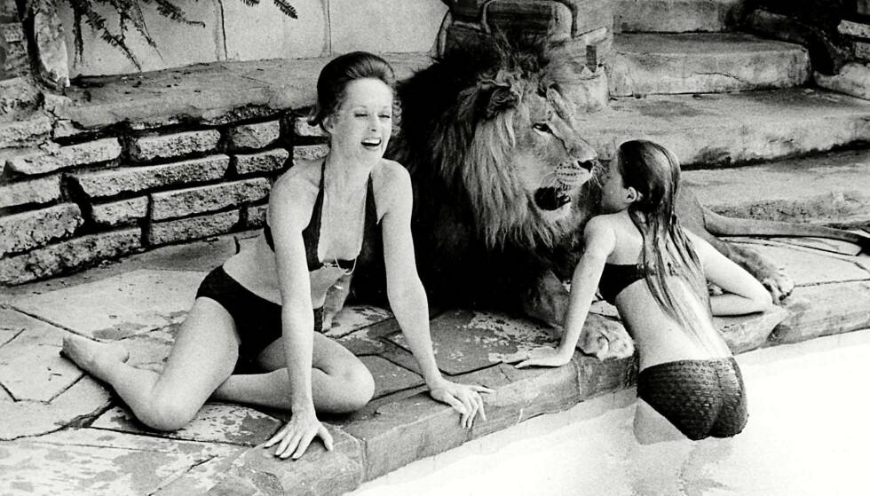 HVERDAGSLIV: Melanie Griffith (13) boltrer seg i bassenget, mens løven Neil og mamma Tippi slapper av på bassengkanten hjemme i California FOTO: NTBScanpix