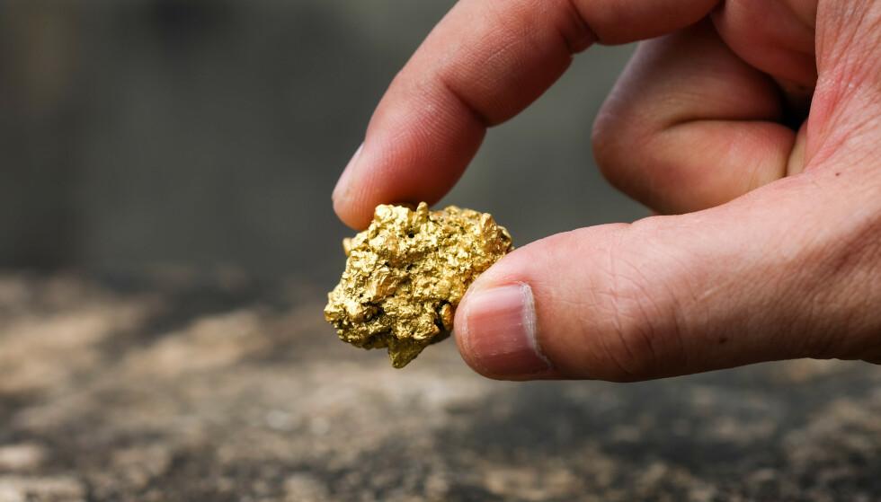 GULL: Man kan i teorien finne gull om man identifiserer gullpartikler i sopp. Foto: Phawat / Shutterstock / NTB scanpix.
