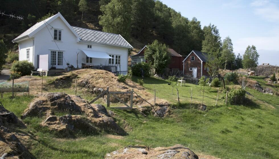 Ryddet tomta: Gården Sørheim i Åkrafjorden ble nesten ikke brukt på 25 år. Skogen vokste tett inntil husveggene da familien fra Karmøy overtok. Foto: Irene Jacobsen