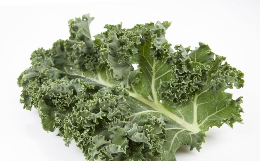TRENDY TRADISJON: Grønnkål har en karakteristisk smak og er noe av det sunneste du kan spise. Den er full av vitaminer, mineraler, kostfiber og samtidig fattig på kalorier. Foto: Frukt.no