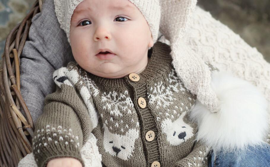 GRATIS OPPSKRIFT: Kjenner du en liten isbjørn? Foto: Klompelompe