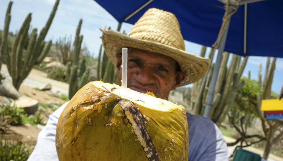 NØTT PÅ VEIEN: En fersk kokosnøttdrink kan du få flere steder langs veiene i Aruba. FOTO: Jörgen Ulvsgärd/TT