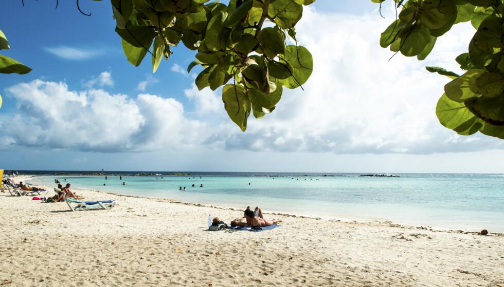 DRØMMESTRAND: Palm Beach er en vakker, langstrakt strand med myk korallsand. Ideell for lange turer. FOTO: Jörgen Ulvsgärd/TT