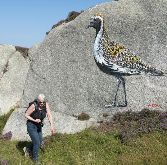 Kunstneren som signerer verkene sine med ATM er kjent for sine flotte dyre- og fuglemotiver. Denne Heiloen ligger fint i terrenget.