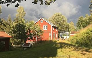 «Når jeg ikke kan henge i hyttehagen min i sommer, blir det som å si at du ikke kan grille på terrassen på Hamar fordi det er for mye smitte i Moss»