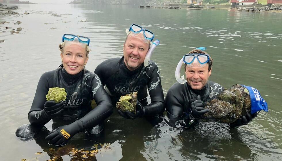 Trond Moi plukker østers sammen med kollegene Rune Andersen og Margit Dale. De tre er kjent fra TV2s matprogram Rune & Margit & Moi, og kommer nå med boka Kystmat. Foto: Anders Martinsen