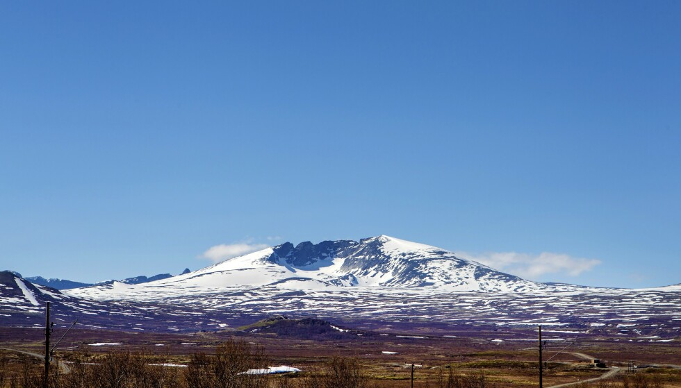 Snøhetta på Dovrefjell i bakgrunnen. Foto: Gorm Kallestad/NTB Scanpix