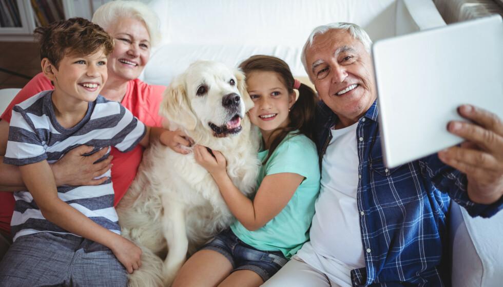 VIKTIG NETTVETT: Det er sosialt og hyggelig å dele familiebilder på Facebook, men det er også viktig å ta hensyn til om barnebarna ønsker at bildene av dem skal være synlige for alle. Foto: Shutterstock NTB