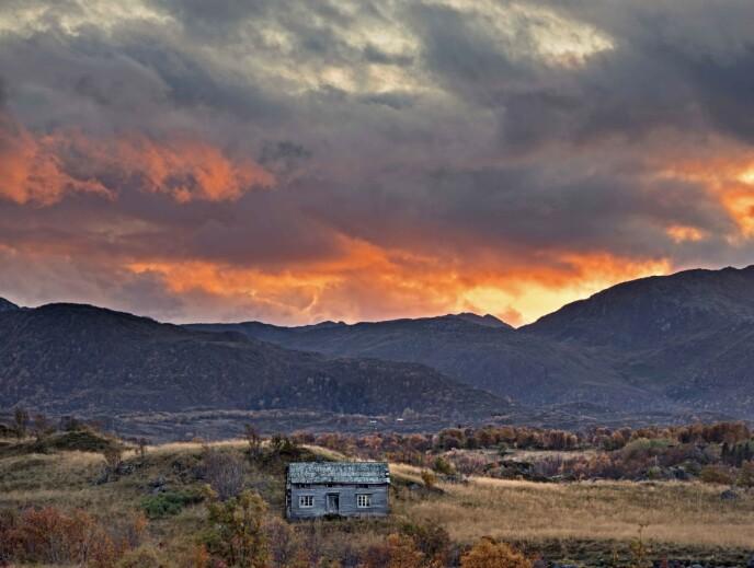 FORLATT: Annys hus blander seg inn i landskapet. Foto: Britt Marie Bye