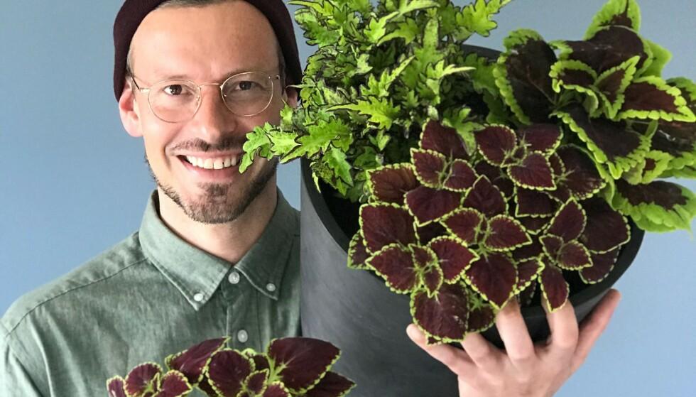 TRENDPLANTE OG PLANTETREND: Anders Røyneberg er utdannet agronom, og har gitt ut boka Plantelykke. Foto: Foto: Erik Schjerven
