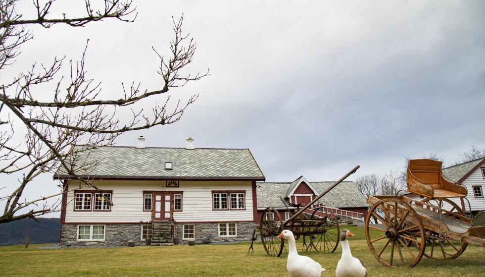 Taket var lekk, bjelker var råtne og de gamle hestevognene sto nedstøvet og bortgjemt på låven. Nå er alt restaurert til sin opprinnelige prakt. Kjelleren på hovedhuset er også gravd ut, så huset har i praksis fått en ekstra etasje. Foto: Siv-Elin Nærø