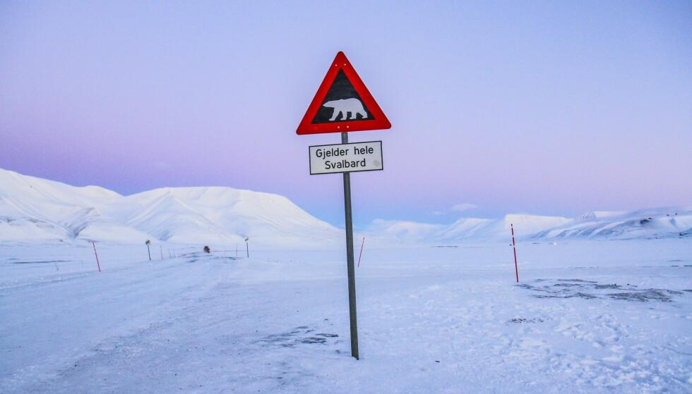ADVARSEL: Her er det isbjørnfare! Et populært fotomotiv for turister, men også en alvorlig beskjed. Foto: Runar Larsen