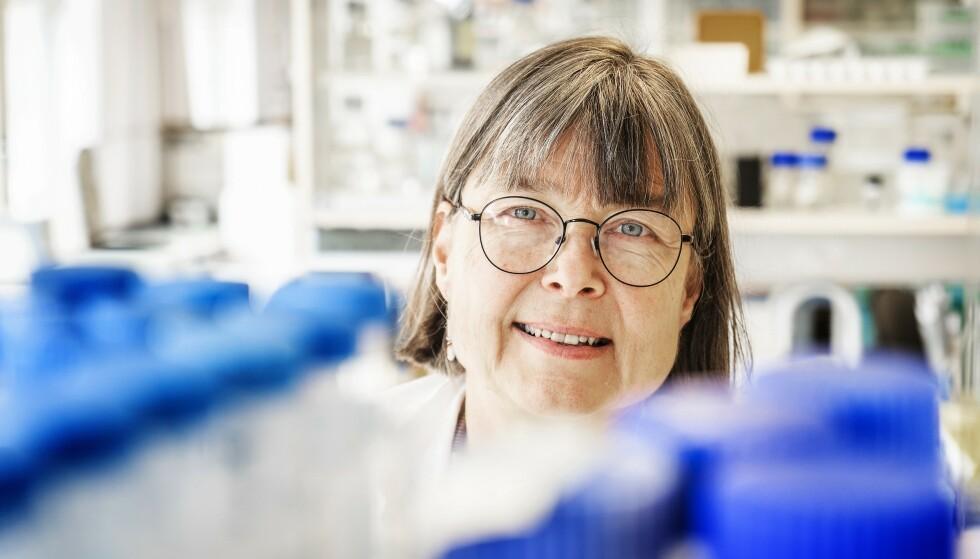 FORSKER: Immunolog Anne Spurkland er en av ekspertene som har vært flittigst intervjuet etter at pandemien kom til Norge. Foto: Hans Arne Vedlog / Dagbladet