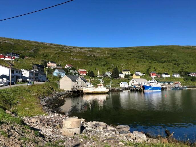 AKKARFJORD: Det gamle fiskeværet Akkarfjord ligger innerst i Akkarfjorden. Her er det 70-80 innbyggere, av mange ulike nasjonaliteter. Akkarfjord Hostel er en annen overnattingsmulighet her, og om sommeren er det skoleelevene som står for hotelldriften. Foto: Privat