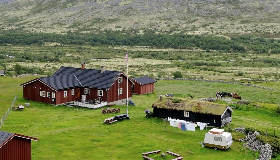IDYLL: Haverdalseter ligger i en frodig dal lengst nord i Rondane. Sommersesongen varer til 15. september, og da kommer det jevnlig turister hit, enten til fots eller med bil. Setra har avtale med Den Norske Turistforening. Foto: Hege Landrø Johnsen