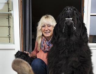 Image: Hunden Cash er Ainas ører