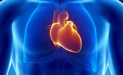Image: - Flere burde vite om at de kan ha hjerteinfarkt uten brystsmerter