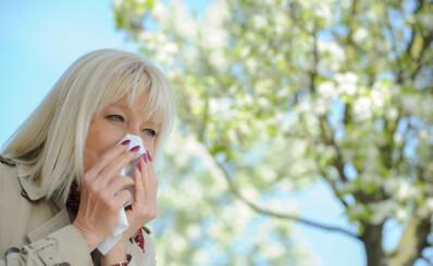 Image: Allergisk? Vær obs på rådyr pris-felle